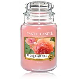 Yankee Candle Sun-Drenched Apricot Rose aromatinė žvakė
