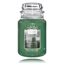 Yankee Candle Evergreen Mist aromatinė žvakė