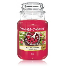 Yankee Candle Red Raspberry aromatinė žvakė