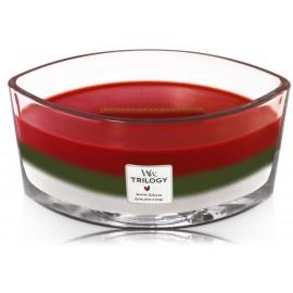 WoodWick TRILOGY Winter Garland aromatinė žvakė