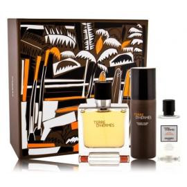 Hermès Terre D'Hermes Pure Parfum rinkinys vyrams (75 ml. + putos + losjonas)